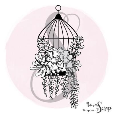 Tampon Cage & Succulentes