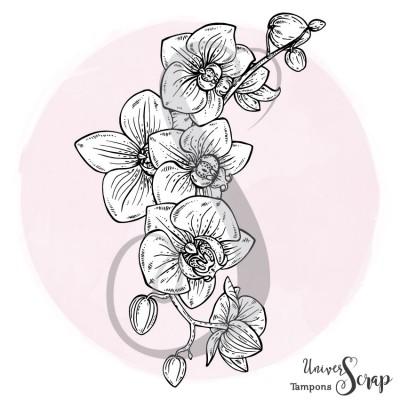 Tampon Branche d'Orchidées
