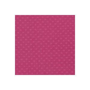 PIROUETT DOT-Papier Bazzill 30X30