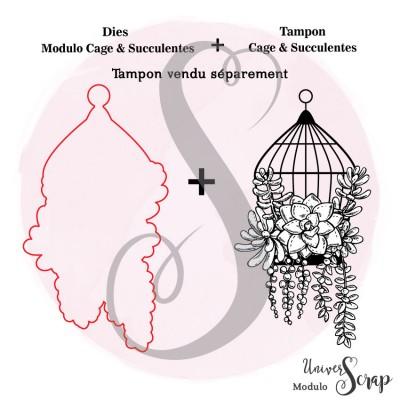 Dies Modulo Cage & Succulentes