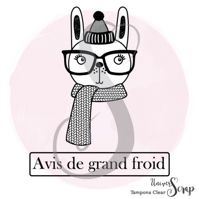 2 Tampons Clear Grand froid