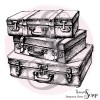 1 Tampon Clear Valises