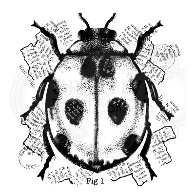Tampon Ladybird