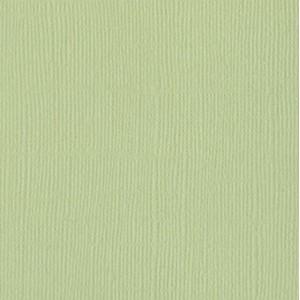 Papier Bazzill 30x30-Aloe Vera