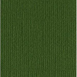 Papier Bazzill 30x30-Ivy