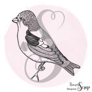 Tampon Oiseau solo