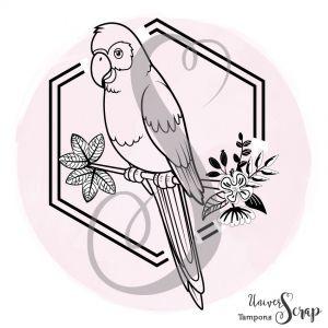Tampon Perroquet